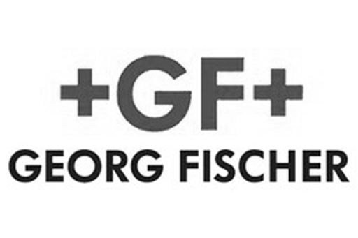 Visit Georg Fischer LLC Website